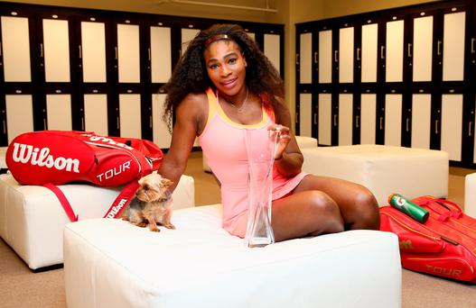 Serena Williams poses for a photgraph with the Butch Bucholz Trophy in the locker room after her straight sets victory against Carla Suarez Navarro of Spain in the final during the Miami Open Presented by Itau at Crandon Park Tennis Center on April 4, 2015 in Key Biscayne, Florida. (Photo by Clive Brunskill/Getty Images)