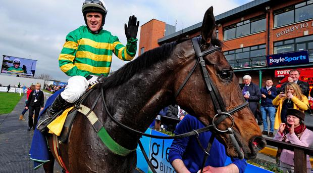 Tony McCoy and GILGAMBOA after their win for trainer Enda Bolger. Photo HEALY RACING.