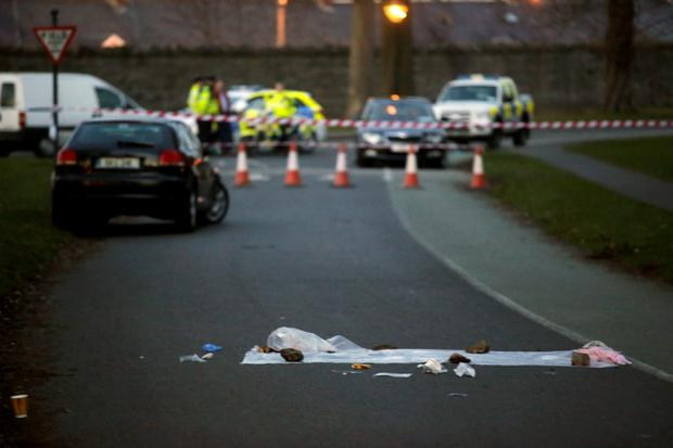 Gardai investigate an incident on the North Road in Phoenix Park