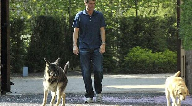 Roy Keane pictured walking his Labrador and German Shepherd last year. The Republic of Ireland assistant manager was walking his dogs while his legal team pleaded not guilty to an alleged road rage offence for their client at Trafford Magistrates' Court today.