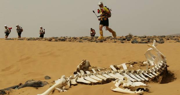 Action during the Marathon Des Sables