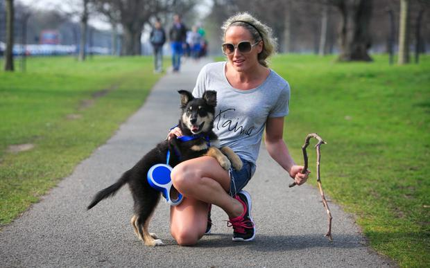 08/04/2015 Michelle Brock from Clondalkin with her dog Duke enjoying the good weather at the Phoenix Park, Dublin