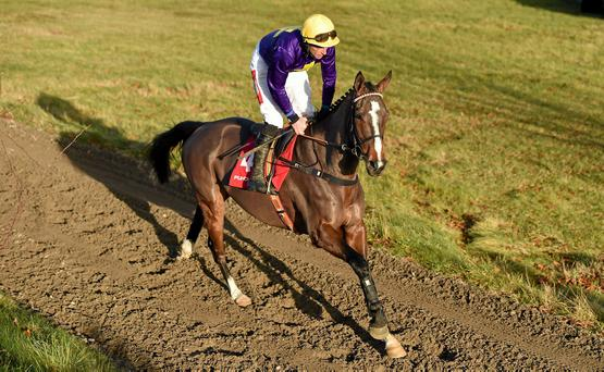 McNamara came in for the Lord Windermere ride after Jim Culloty jocked off Davy Russell following a disappointing Gold Cup run