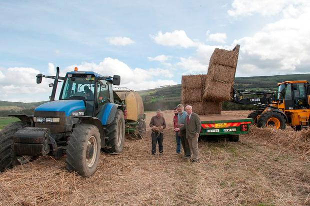 Contractors David Hatton, John O' Keeffe, John Joe Bohana pictured harvesting miscanthus with Paddy O' Toole from farm merchants, Quinns of Baltinglass. Photo Joe Byrne