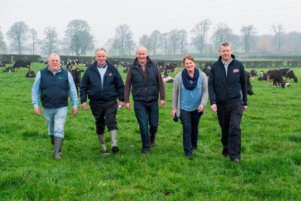 Pictured at last week's Dairygold/Teagasc dairy development programme farm walk on Clement and Eileen Twomey's farm, Mount Rivers, Fermoy, Co Cork were speakers Adrian O'Callaghan, Teagasc Mallow, Tom Feeney, Vice Chairman, Dairygold, Clement and Eileen Twomey, hosts and Billy Cronin, Dairygold. Photo: O'Gorman Photography.