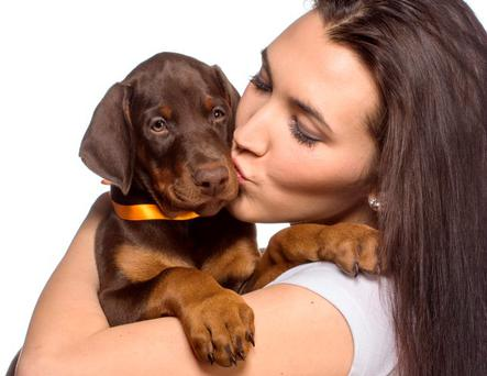 The findings suggest owners love their pets in the same way as family members, and dogs return their devoted affection. Picture posed