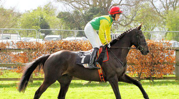 Goonyella and Jamie Flynn