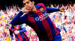 Luis Suarez has made a rapid adjustment to life at Barcelona and will be hoping to add to the two goals he scored in the Champions League quarter-final first leg 3-1 win against Paris Saint-Germain in tonight's second leg at the Nou Camp