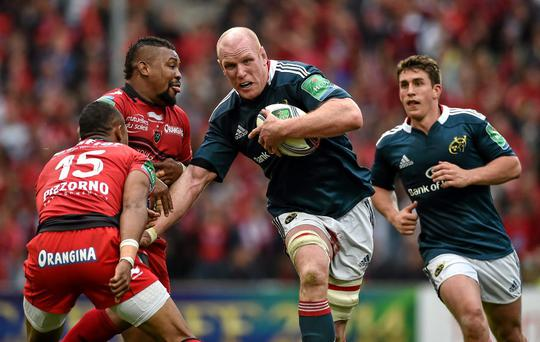 Paul O'Connell in action against Toulon in last year's Heineken Cup semi-final