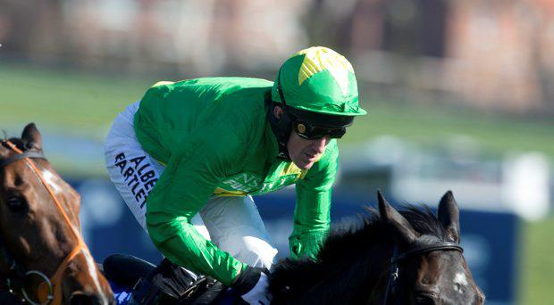 Upsilon Bleu ridden by Tony McCoy