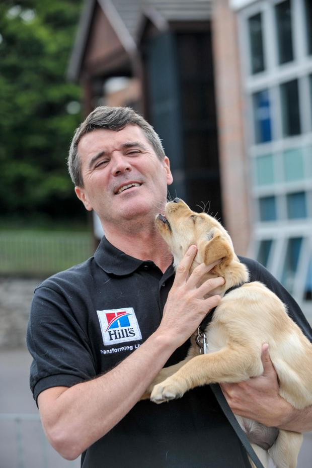 Roy Keane pictured with Uma, a golden labrador puppy, at the launch of Irish Guide Dogs for the Blind new national campaign Guide Dog Day taking place on 1st May