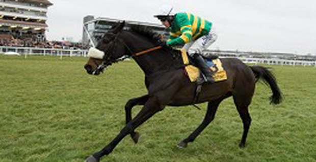 Tony McCoy with partner Mr Mole at Sandown on Saturday