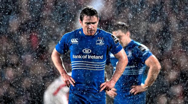 Leinster's Eoin Reddan said the players backed Matt O'Connor