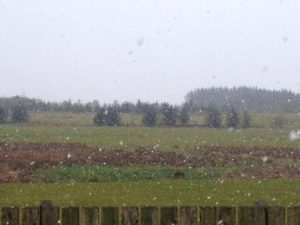 Snow in the hills of Tyrone Credit: Aisling Kelly