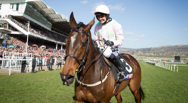 Ruby Walsh after winning on Douvan in the Supreme Novices' Hurdle Cheltenham Festival