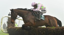 Djakadam, with Ruby Walsh up, jumps the last on their way to winning the Goffs Thyestes Handicap Steeplechase, in January this year (Spotsfile)