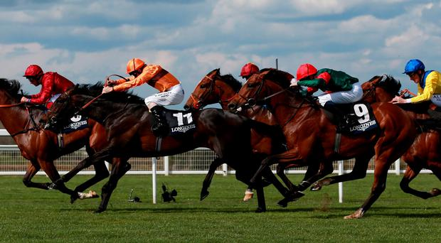 Mizzou ridden by William Buick (No 9) gets up to beat Wakea and Forever Now in the Longines Sagaro Stakes during Discover Ascot Raceday at Ascot Racecourse