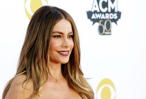 The ex-fiance of actress Sofia Vergara has defended his controversial decision to sue her for custody of two frozen embryos they created through IVF during their relationship (REUTERS/Mike Stone)