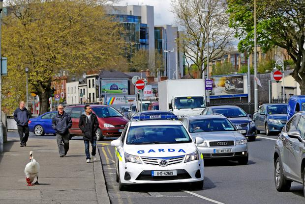 30/4/15 An injured swan gets a Garda escort and holds up traffic on the quays at Heuston Station this morning Pic: Marc O'Sullivan