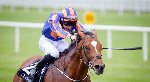 Gleneagles is the favourite for the 2000 Guineas