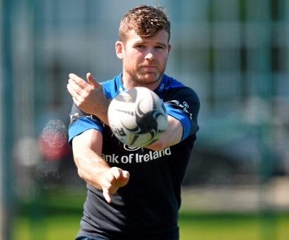 Gordon D'Arcy has been a vital part of the Leinster success story