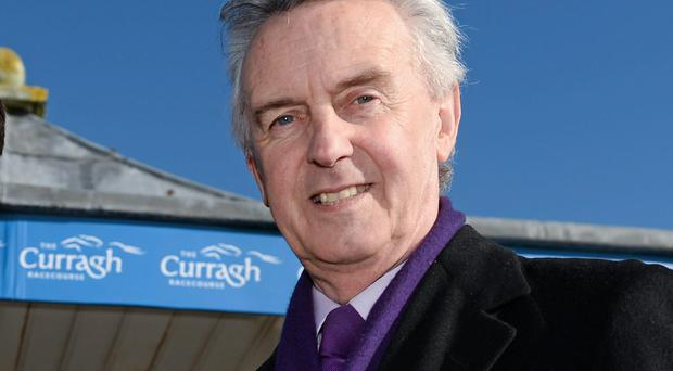 Trainer Jim Bolger has several horses running today at Sligo, including Countess Constance in the opener