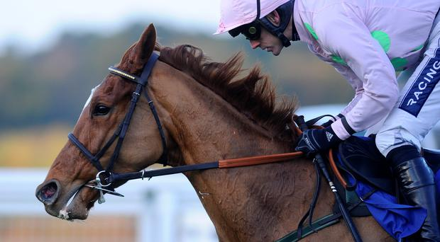 Annie Power, here with Ruby Walsh on their way to winning at Ascot in 2013, is a favourite to triumph at Punchestown