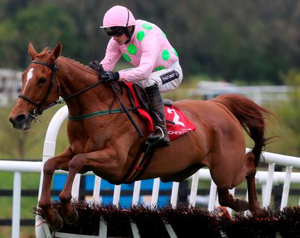 Ruby Walsh and Annie Power win the Mares' Champion Hurdle