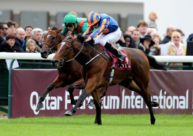Ryan Moore renews his partnership with Found, here winning last season's Prix Marcel Boussac