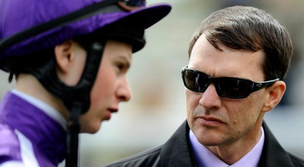 Trainer Aidan O'Brien will see Hans Holbein taken on by Godolphin's Future Empire at Chester