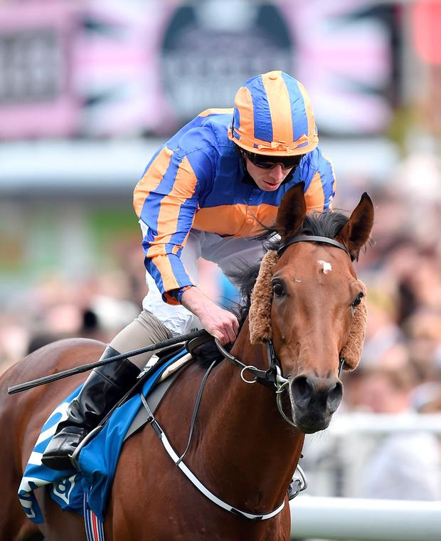 Hans Holbein ridden by Ryan Moore wins The MBNA Chester Vase, during the Boodles Ladies Day of the Boodles May Festival at Chester Racecourse