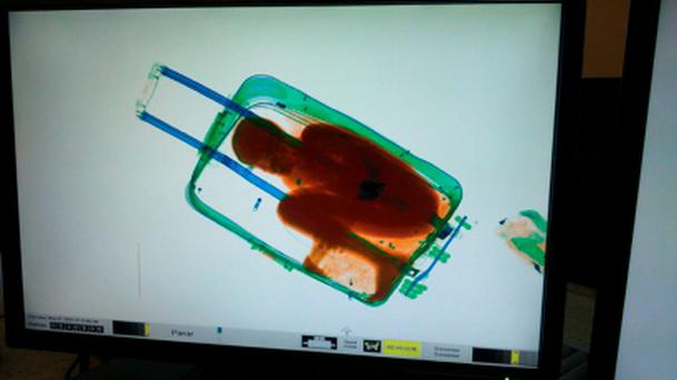 The figure of the eight-year-old boy as seen inside the suitcase Credit: MINISTERIO DEL INTERIOR/Reuters