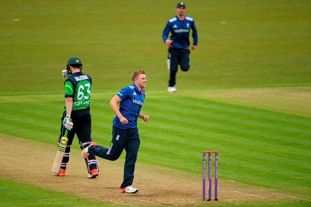 England's David Willey celebrates taking the wicket of Ireland's Andrew Balbirnie, caught by Jason Roy.