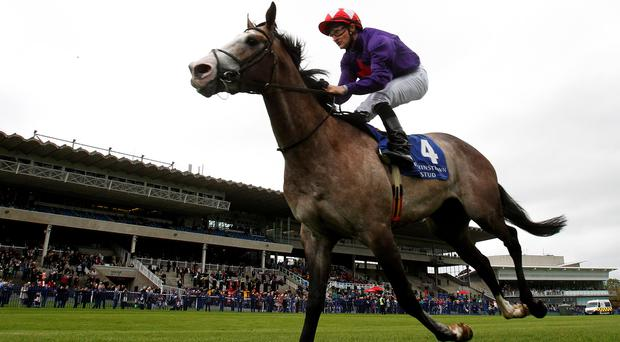 Success Days ridden by Shane Foley on the way to winning the Derrinstown Stud Derby Trial Stakes during Derrinstown Stud Derby Trial Day at Leopardstown Racecourse, Dublin (Brian Lawless/PA Wire)