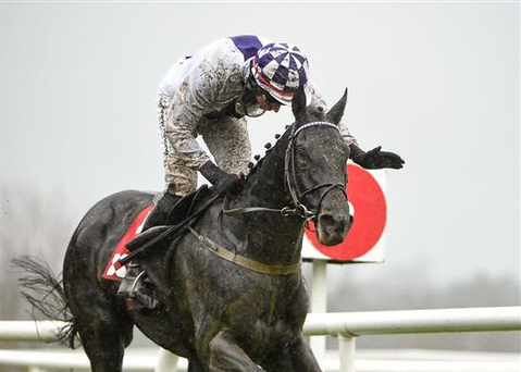Jockey Mikey Fogarty, pictured last year onboard his mount Fiscal Focus, was in the plate and gave the 10-year-old gelding a well-judged ride to steer the longshot to a length and three-quarters victory over 5/6 market leader Ted Veale (Sportsfile)