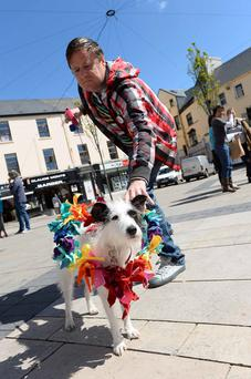 James Brennan, from Tralee, and his dog Daisy Duke, promoting a 'Yes' vote in the marriage-equality referendum yesterday