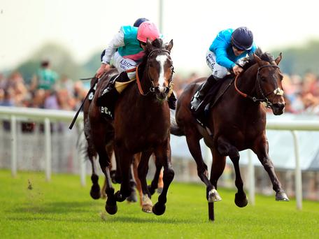 Snow Sky, with Ryan Moore up (left), gets the better of Brown Panther (Richard Kingscote) to claim the Yorkshire Cup yesterday