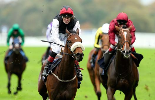 Pat Smullen will have the chance to impress again with Forgotten Rules in tomorrow's Group Three