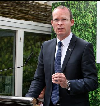 Defence Minister Simon Coveney: value for money