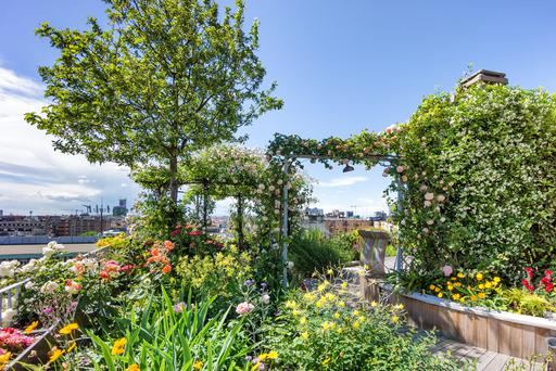 Many employees wish for a roof top garden