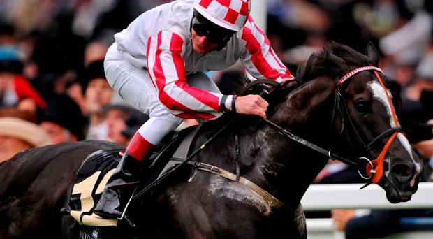Sole Power will run at the Curragh tomorrow