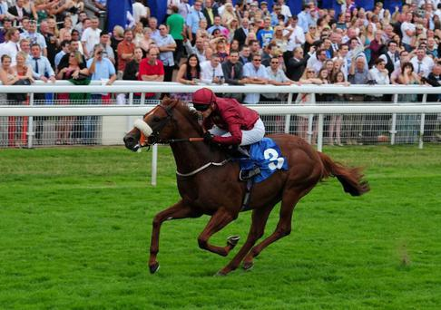 Hot Streak looksthe value wager in today's Temple Stakes at Haydock (Anna Gowthorpe/PA Wire)
