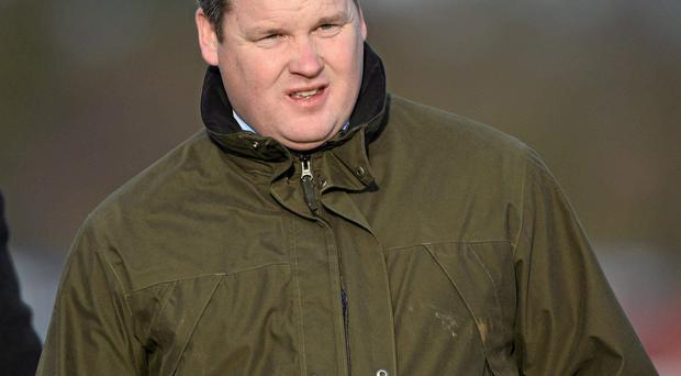 Trainer Gordon Elliot could depart Ballinrobe with a small handful of winners tonight