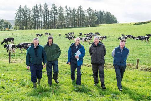 Billy Cronin, Dairygold, host farmer Con Lehane, and Teagasc's Pat Buckley, James O'Loughlin and John Maher at the Heavy Soils open day in Ballinagree, Macroom, Co Cork . Photo O'Gorman Photography.