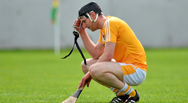 Antrim's Odhran McFadden slumps to his knees after their defeat to Carlowe condemned the country to a year in the Christy Ring Cup (Matt Browne / SPORTSFILE)