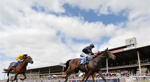 Curvy, with Wayne Lordan up, crosses the finish line to win the Airlie Stud Gallinule Stakes ahead of Giovanni Canaletto, with Ryan Moore up, hidden, and Prince Gagarin, with Adam Kirby up, left on Sunday (Cody Glenn / SPORTSFILE)