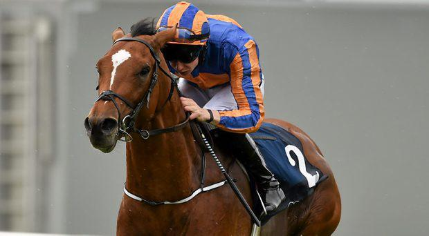 Gleneagles, with Joseph O'Brien up, on their way to winning the Galileo European Breeders Fund Futurity Stakes