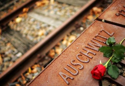 A red rose lies at Gleis 17, holocaust memorial at a former cargo railway station in Berlin Credit: Reuters