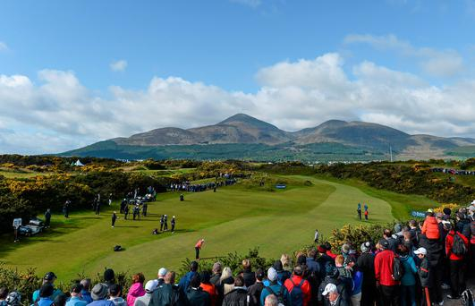 The Mourne Mountains provide the picture postcard backdrop as Rory McIlroy putts on the 13th green at Royal County Down