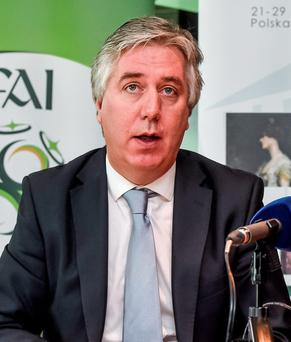 John Delaney confirmed that the FAI came to a settlement with FIFA after Thierry Henry's handball